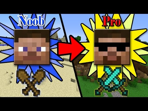 Xxx Mp4 5 FAST EASY Ways To Transform From NOOB To PRO In Minecraft 3gp Sex