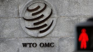 WTO members to issue statement on Appellate Body vacancies