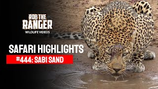 Idube Safari Highlights #444: 05 - 11 November 2016 (Latest Sightings) (4K Video)