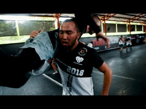 Xxx Mp4 2018 Tiger Muay Thai Team Tryouts Documentary Episode 2 3gp Sex