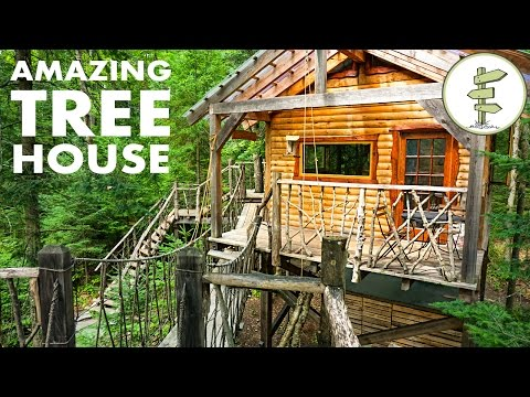 Tiny Tree House with Hanging Bridge Makes Off Grid Living Fun!
