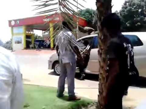 Xxx Mp4 Dhanush In Velai Illa Pattathari Shooting Spot At Mayajaal Chennai YouTube 3gp Sex