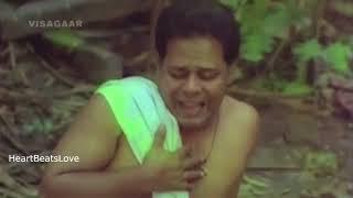 Pattu Chali കണ്ണാങ്കെ കണ്ണാങ്കെ Malayalam Troll | Malayalam WhatsApp Status