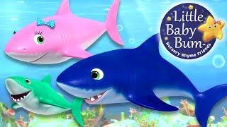 Baby Shark Song | Nursery Rhymes | By LittleBabyBum!