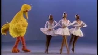 Elmocize - Zoe's Dance Moves Full Version