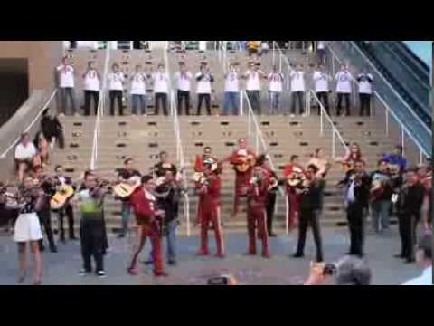Pulling Strings Mariachi Flashmob