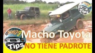 Toyota Macho NO TIENE PADROTE | Dictando clases 4x4 | (Sino lo hubieran filmado no lo creerían)