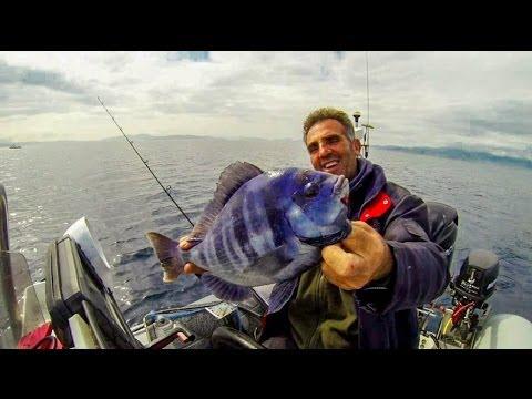 Ψαρεμα Σκαθαρια συρτοκαθετη