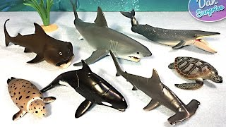 15 SEA ANIMALS SURPRISE TOYS 3D PUZZLES - Great White Shark Whale Manta Ray Beluga Turtle