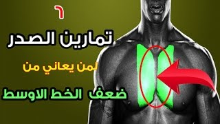 6 تمارين عضلات الصدر  كمال الاجسام لمن يعاني ضعف  الخط الاوسط  المنطقة وسطى-boudybuilding