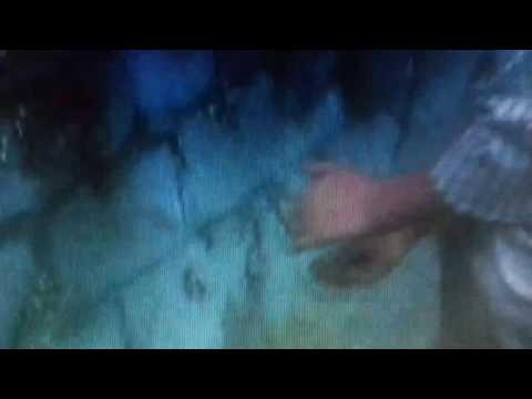 Xxx Mp4 James The Giant Peach 1996 The Man With The Green Things 3gp Sex
