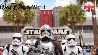 WALT DISNEY WORLD | Rides, Live Shows & Experiences at Hollywood Studios | Official Disney UK