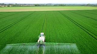 Spraying Winter Wheat | With Drone