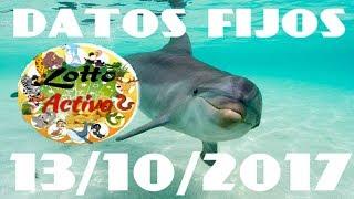 LOTTO ACTIVO DATOS FIJOS 13/10/2017 blue19