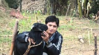 Latest lok geet Dharti Kunko Aakash Joonkai Ho by Bishnu Majhi and Ramji