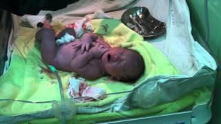 第一胎 自然產 無打無痛分娩1020105