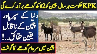 China want Donkey for KPK government