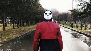 პანდა / Panda - დუპც ტაპც! dupc tapc! (პროექტის დასასრული)