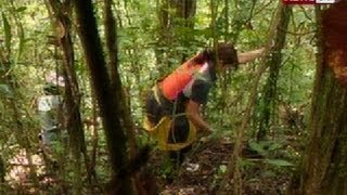 NTG: 'Rattan sa pusod ng Sierra Madre', I-Witness dokyu ni Kara David mamayang gabi sa GMA-7