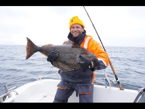 видео рыбалка на палтуса
