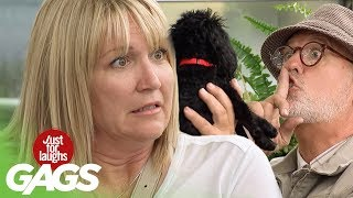 How to Shut Up a Barking Dog - Just For Laughs Gags