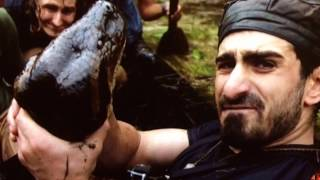 Anaconda vs Python!  World's Largest Snakes