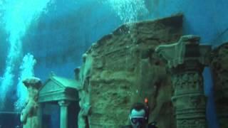 Dive 4 Live am 26/03/2016 3v5