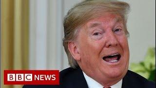 Trump blasts Macron 'brain dead' comments as 'nasty'  - BBC News