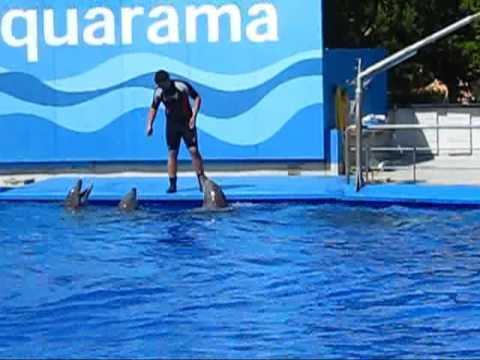 Barcelona Zoo Aquarama