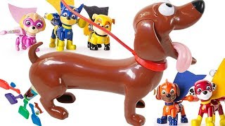 Learn Colors with Paw Patrol Doggy Doggie Doo Don