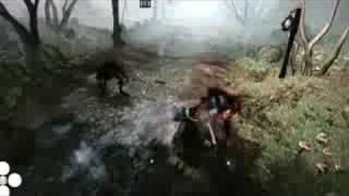 Fable 2: Magic User Combat!