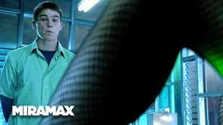 40 Days and 40 Nights | 'Photocopy Flirting' (HD) – Josh Hartnett | MIRAMAX