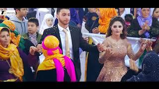 Viranşehir' Nişan / Wedding / Sänger: Koma Xesan / Powered by Terzan Television™ - WER DENN SONST!!!