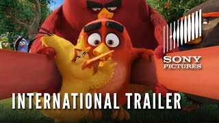 THE ANGRY BIRDS MOVIE:  In Theatres May 20 - International Trailer