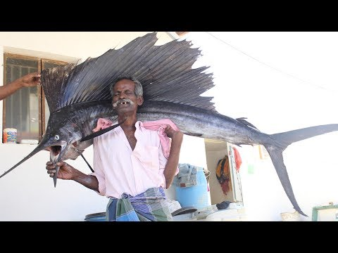 BIG KOLA FISH Prepared by my Daddy / Village food factory