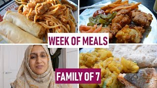 A Week of Meals for a Family of 7 | What We Ate | Meal Ideas | April 2019 | Shamsa