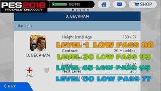 D. Beckham Stats Level 1 vs 30 vs 45 vs 60