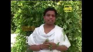 Ayurvedic use  Winged Leaved Clitoria  (Aparajita)