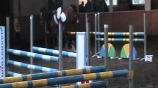 Bo & Cinder jumping Zammel