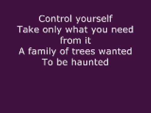 Kids - MGMT w/lyrics