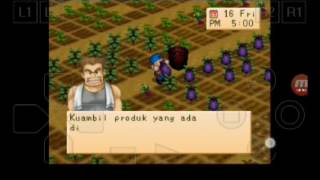 harvest moon back tonature indonesia part 44