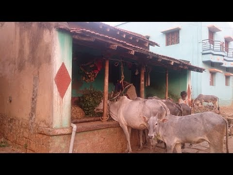 Xxx Mp4 Indian Village Life Desa Karnataka 3gp Sex