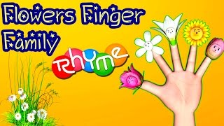 5 little flowers song for kids with lyrics flower songs for flowers finger family cartoon flowers 3 years ago mightylinksfo Image collections
