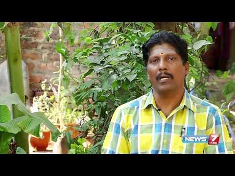 'Paal Perukki' helps to increase breast milk secretion | Poovali | News7 Tamil