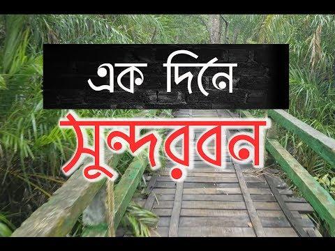 Xxx Mp4 এক দিনে সুন্দরবন ভ্রমণ করমজল Sundarban Tour In One Day Koromjol Sayem 39 S World 3gp Sex