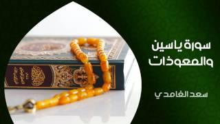 الشيخ سعد الغامدي - سورة يس والمعوذات (النسخة الأصلية) | Saad Al Ghamdi - Surat Yasin & Al Mauzat