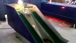 صيصان حلوين عبيلعبو و يتزحلطو - حتشوفه اكثر من مرة أكيد