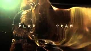 Garo Gold Storm 2 opening