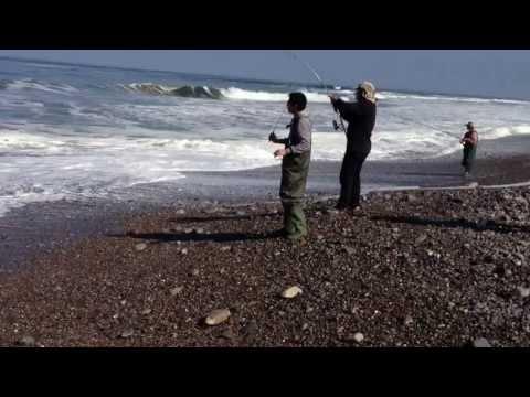 pesca en Iquique