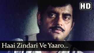 Haai Zindari Ve Yaaro (HD) - Vishwanath Song - Pran - Shatrughan Sinha - Reena Roy - Sulochana